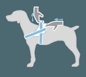 Нагръдник за куче