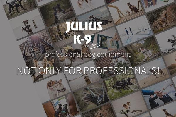 Juluis K9 история